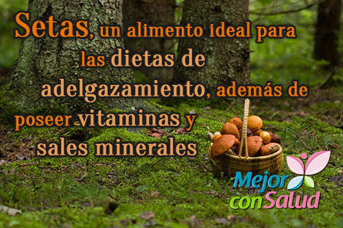 setas-vitaminas-sales