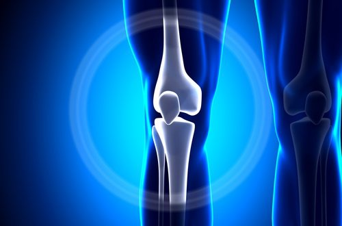 Calcio en huesos