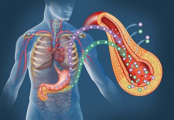 valori insulina alti difficoltà perdere peso